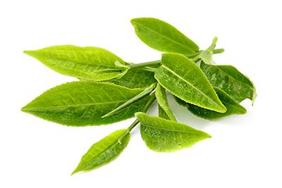 Zöld tea, szálas, Japán cseresznye zöld tea